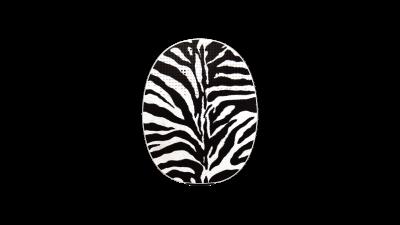 RONDO 3 Mikrofonabdeckung Zebra Skin